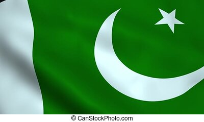 Realistic Pakistan flag waving in the wind Seamless looping...
