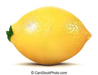 Isolated lemon fruit