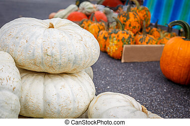White Pumpkins - A picture of White Pumpkins stacked in the...