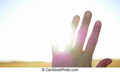the sun's rays through the fingers of the hands
