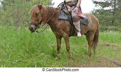 woman sitting in the saddle on the horse slow motion video -...