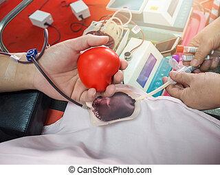 hospital, Enfermera, recibiendo, sangre, donante