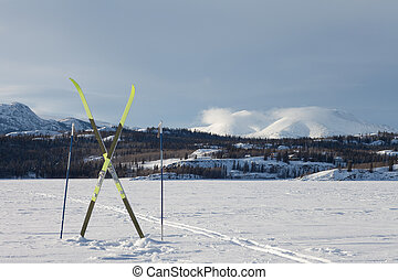 X-country ski winter sport concept - Cross country skiing...