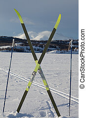 X-country ski winter sport concept - Cross country skiing....