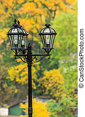 lantern in a city park close-up on a foliage background -...