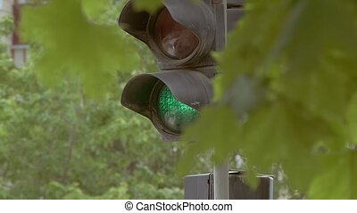 green traffic light through the leaves of slow-motion video...