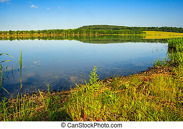 Mountain lake near forest - Mountain lake and forest on the...