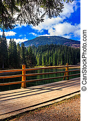 fence on mountain Lake near forest - fence on the Lake in...