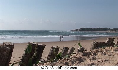 Indian ocean beach coast Mozambique - South Africa...
