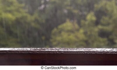 Tropical heavy rain in forest background. It contains the...