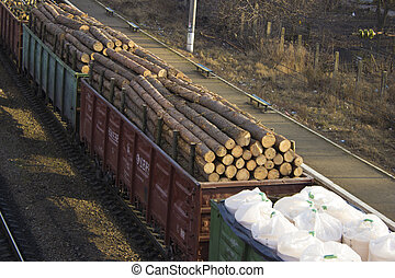 A freight train transports the barrels of trees