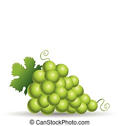 Green grapes with leaves isolated on white
