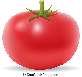 Tomato - 3d tomato isolated on white