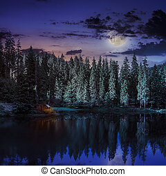 Mountain lake in coniferous forest at night - lake and...
