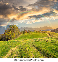 path on hillside meadow in mountain at sunrise - composite...