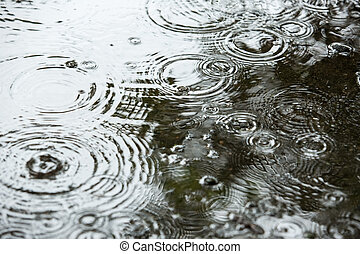 Beautiful backgrounds with falling water drops in a puddle...
