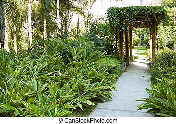 Garden - Tranquil  gazebo with plant around