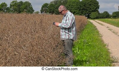 Farmer using tablet PC near to dry rape field