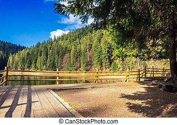 pier on mountain Lake near forest - pier on the Lake in...