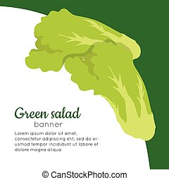 Green Salad Banner. Healthy Food Concept. Vector - Green...