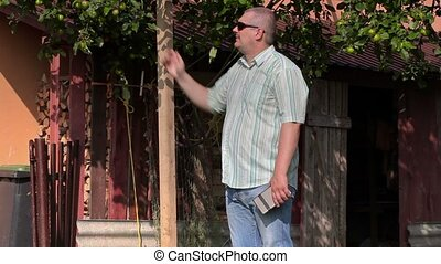 Man checks the apple tree at home