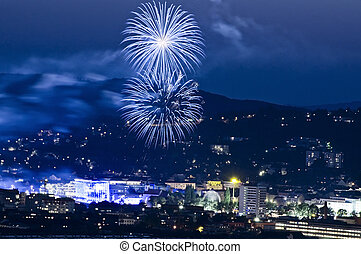 Firework in the Blue Hour - Firework in Linz, a capital City...