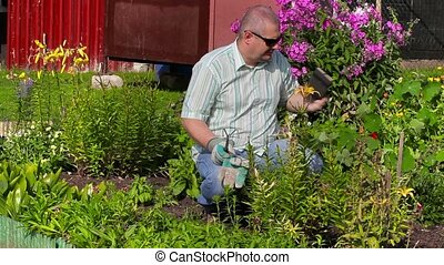 Man take pictures in garden near flowers