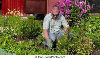 Man working in garden near flowers