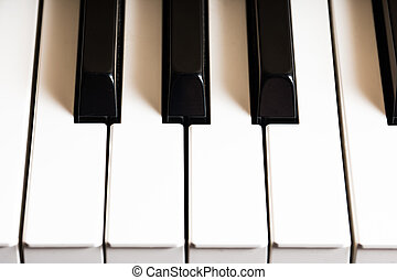 Piano, a photo shoot for the international music day