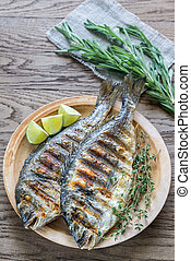 Grilled Dorade Royale Fish