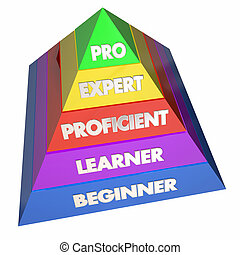 Professional Expert Learner Experience Pyramid 3d...