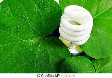 compact fluorescent light bulb and green leaves (green...