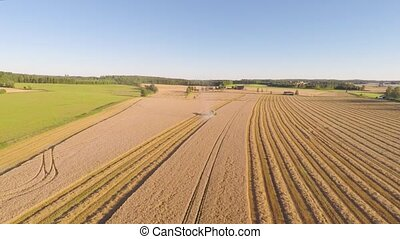 Flying over combine harvester at organic grainfield on a...