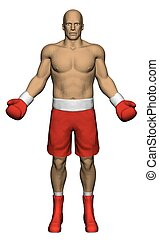 Boxer - Vector illustration of realistic boxer with gloves...