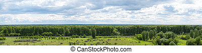 Panorama of green trees and blue sky