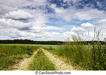 Rural Road with Field and Blue Sky with Clouds.