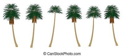 Set with palm trees