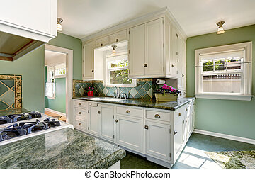 Classic American kitchen room interior in green and white tones