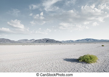 panoramic view od dry desert in death valley with some...