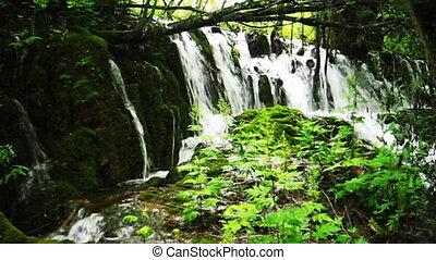 jiuzhaigou 15 - waterfall, stream and forest, Jiuzhaigou...
