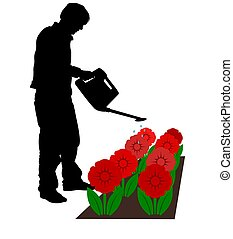 Watering Flowers - Illustrated silhouette man watering...