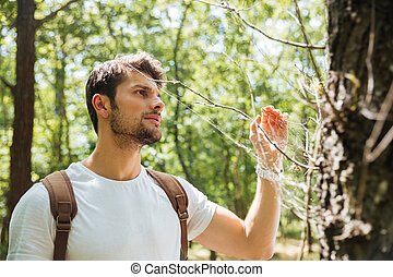 Man standing and looking at spider web in forest - Serious...