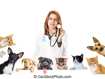 smiling vet and dog and cat