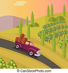 Track Carries Baskets with Grape. Wine Production. - Track...