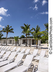 Tropical beach - Sun loungers at a tropical beach resort in...
