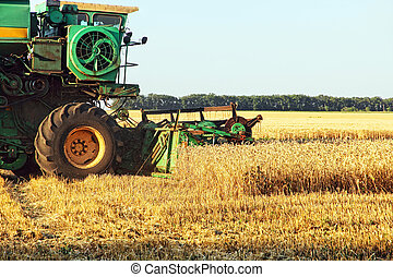 Combine harvester in wheat field.