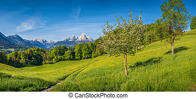 Springlike alpine mountain landscape with flowers and...