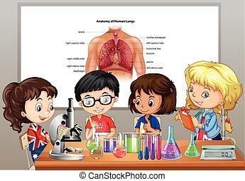 estudiantes, Ciencia, Laboratorios, habitación