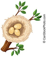 Three eggs in bird nest illustration