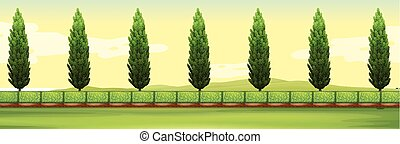 Scene with pine trees in the park illustration